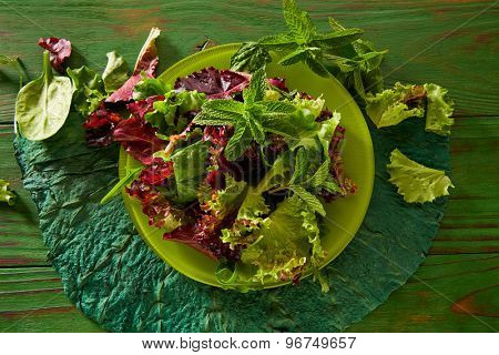 Fresh green salad with spinach lettuce on monochrome rustic wood table