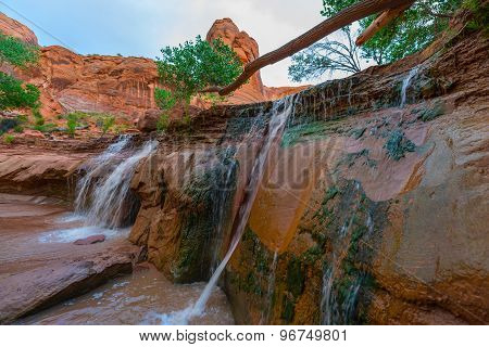 Coyote Gulch Lower Waterfall