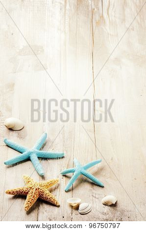 Summer Setting With Sea Shells On Old Wooden Background