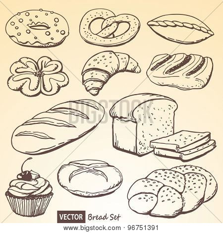 The set of vector bread and rolls based on a hand drawn illustration
