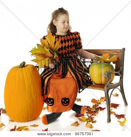 An elementary girl in a pretty orange and black dress sitting on a park bench collecting large, colorful leaves with pumpkins by her side.  On a white background.