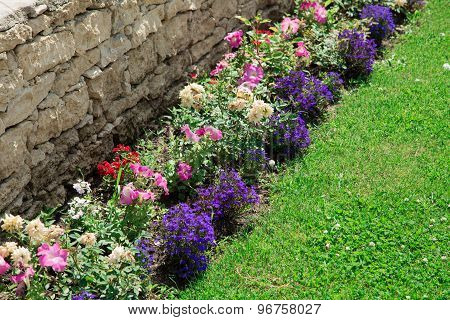 Multicolored flowerbed on a lawn