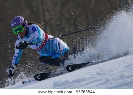 GARMISCH PARTENKIRCHEN, GERMANY. Feb 19 2011: Sarka Zahrobska (CZE) competing in the women's slalom race , at the 2011 Alpine skiing World Championships