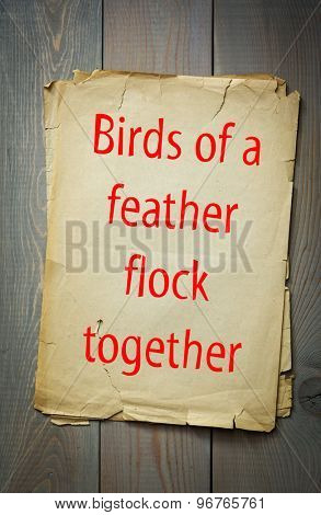 English proverb: Birds of a feather flock together. 50 most important english proverbs series