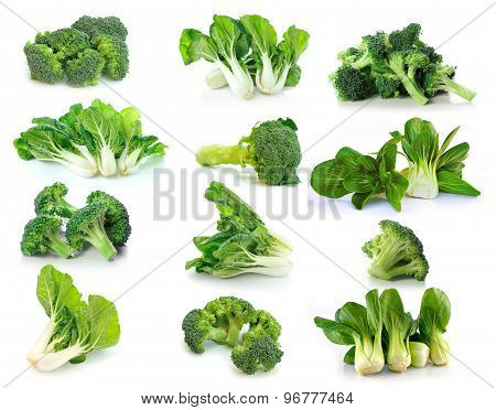 Broccoli And Bok Choy Vegetable On White Background