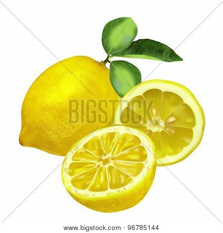 Fresh lemon with leaves, lemon slice and part
