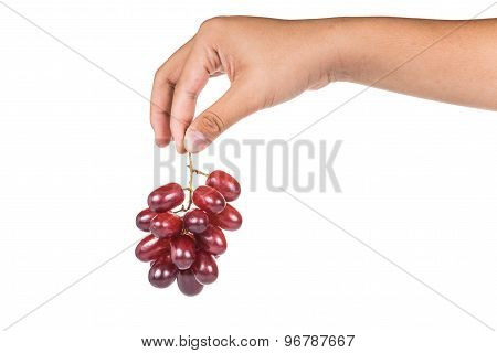 Fingers holding a bunch of sweet and juicy crimson red grapes