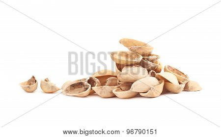 Pile of multiple pistachio shells isolated