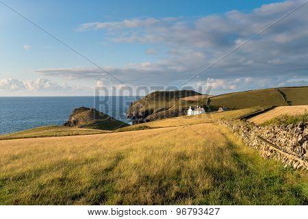 The Cornish Coast At Port Quin