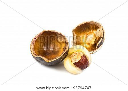 Brazilian longan fruit with focus on its thick flesh