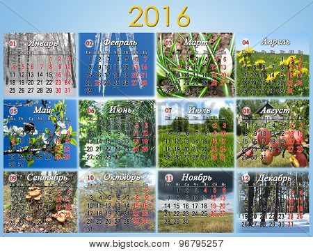 calendar for 2016 in Russian with photo of nature