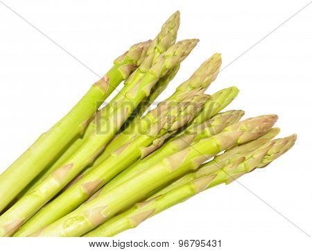 Fresh Uncooked Asparagus Tips