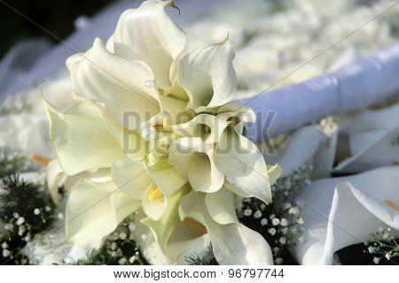 Wedding Bouquet Of Callas