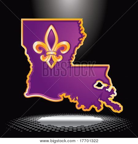 louisiana state shape under spotlight