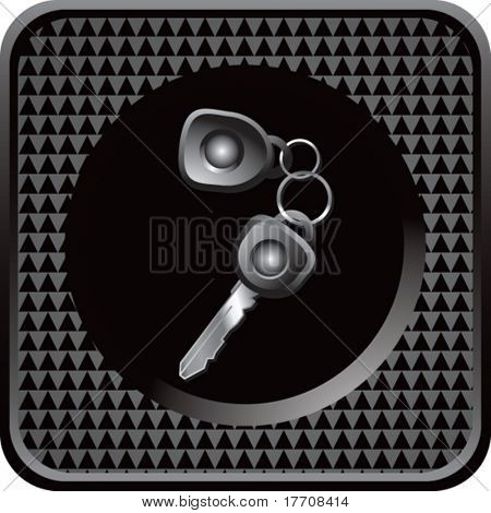 set of keys on black checkered web button