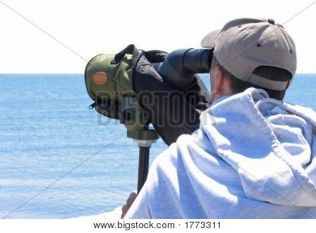 Auf der Suche nach Vögel