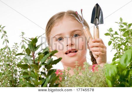 Herbal garden - little girl with garden tools