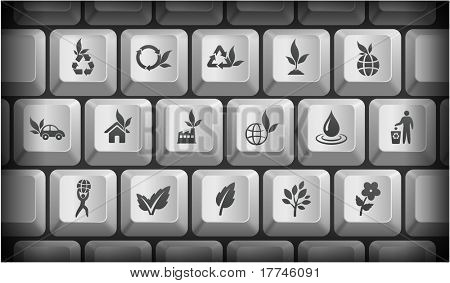 Nature Icons on Gray Computer Keyboard Buttons Original Illustration