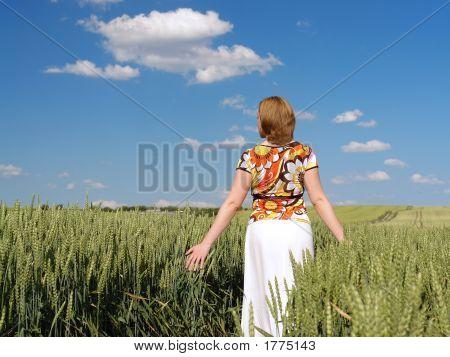 Romantic Stroll Through Wheat Corn