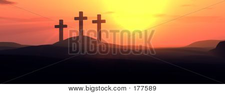 The Cross 11