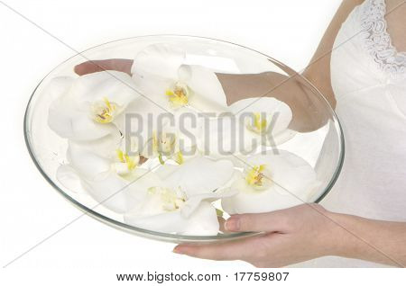Beautiful girl holding orchid flower in vase