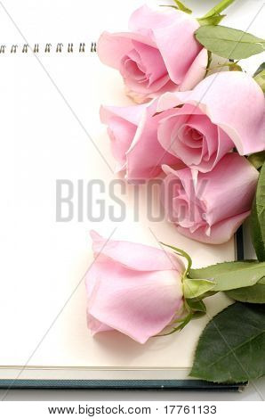 Rose with blank note