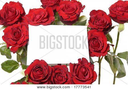 Mensaje de rosa roja