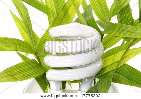 energy saving light bulb - environmental theme