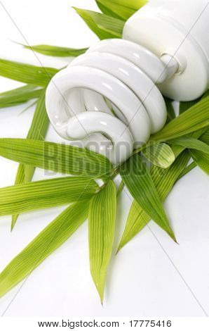 energy saving light bulb - environmental theme
