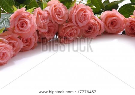 Floral corner border made from pink roses