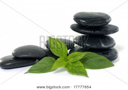 Stack pebbles with green leaves