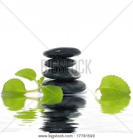 Spa massagem de pedras de tratamento com erva de folhas de bálsamo