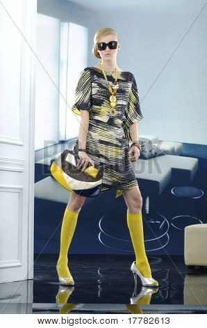 model with handbag. posing in the studio