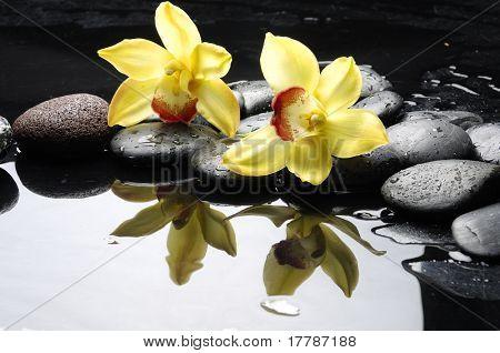 Stillleben mit orange orchidee mit Wasser Tropfen