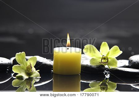 tranquil spa scene-green orchid , burning candle and pebbles