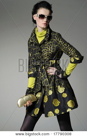 fashion model in sunglass holding little purse posing in the studio
