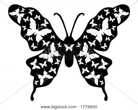 Butterfly Floral Background Designer Ornamental Art 9