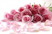 stock photo of rose flower  - bouquet of beautiful flowers with petals - JPG