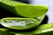 stock photo of aloe-vera  - Sliced of aloe vera leaf - JPG