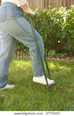 Rasen anreichert