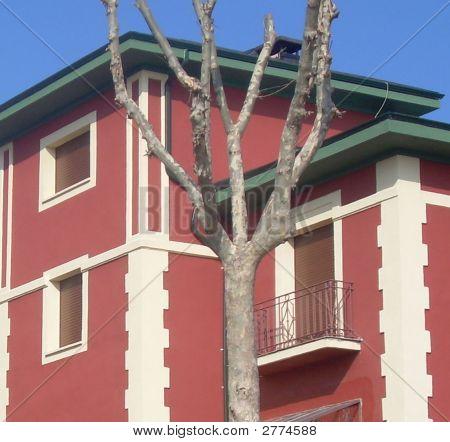 European Red House