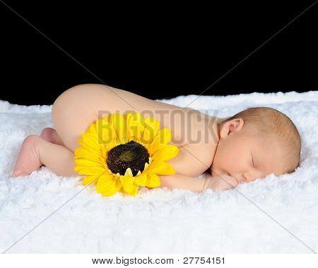 Sweet Newborn Sleeping Peacefully On A White Blanket