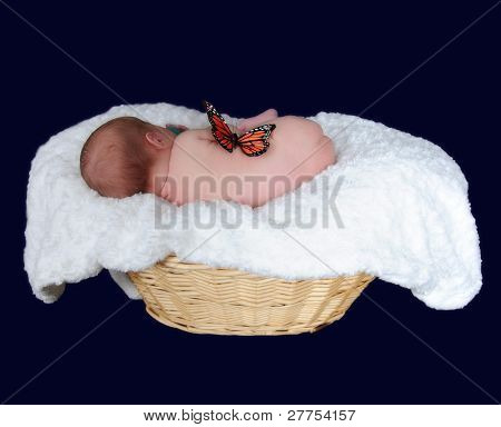 Newborn In Basket Sleeping On Side. Isolated