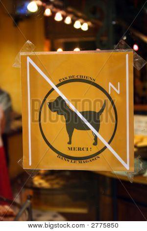 No Dog Warning