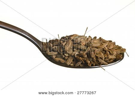 Fennel Seeds In A Spoon