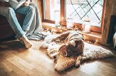 Man Reading Book On The Cozy Couch Near Slipping His Beagle Dog On Sheepskin In Cozy Home Atmosphere poster