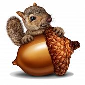 Funny Squirrel Holding A Giant Acorn Tree Nut As A Wealth Or Wealthy Metaphor For Business And Finan poster