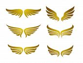 Golden Set Vector Wings,  Vector Wings Collection, Wing Logo Company, Icon Wing Flying, Eagle Wing B poster