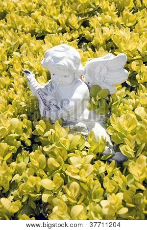 Angel Statue Playing Music In Flowers