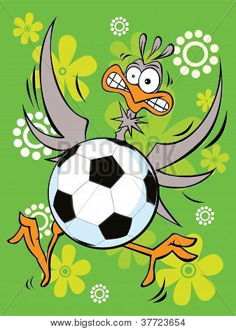 Goalkeeper - Ostrich Play Football